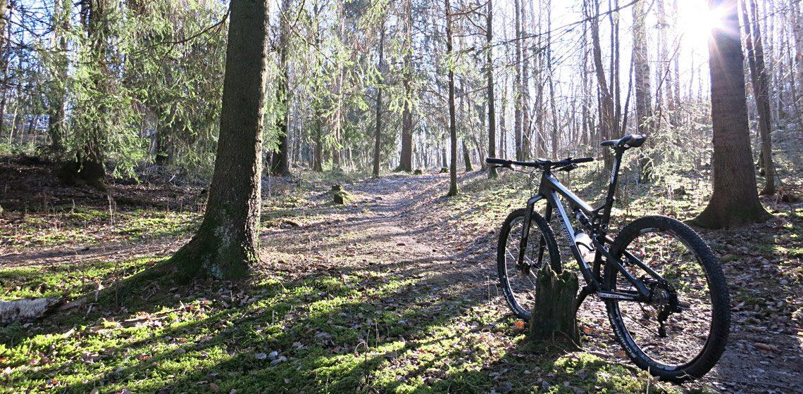 Bild på cykel i skogen